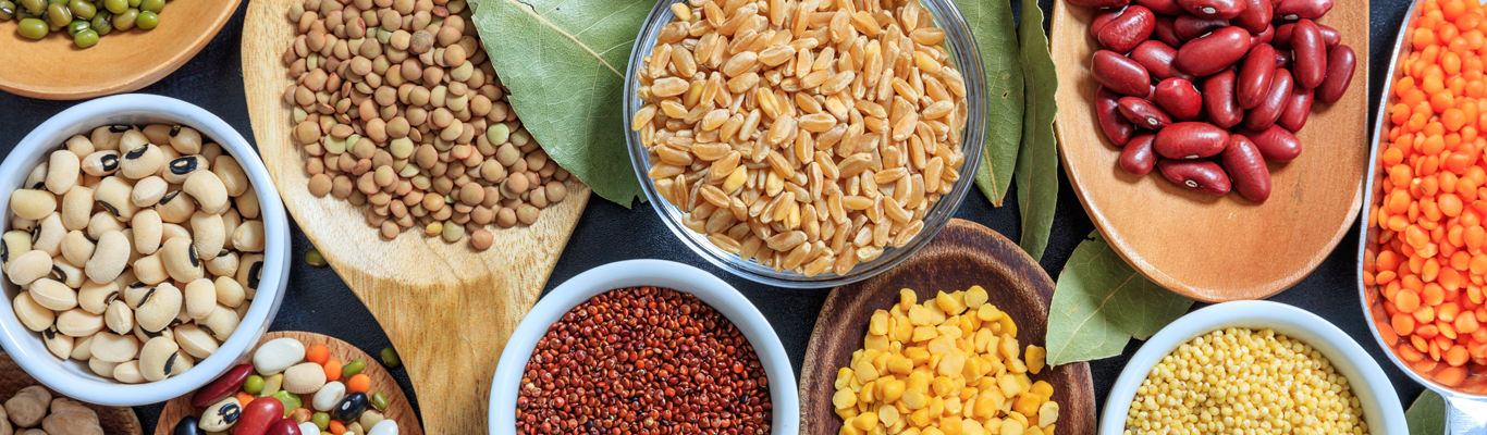Ingredients and expertsie that inspire food product development